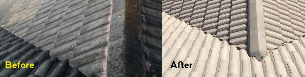 Roof Shampoo Melbourne FL